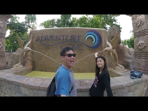 A Fun Day at Adventure Cove waterpark!!!