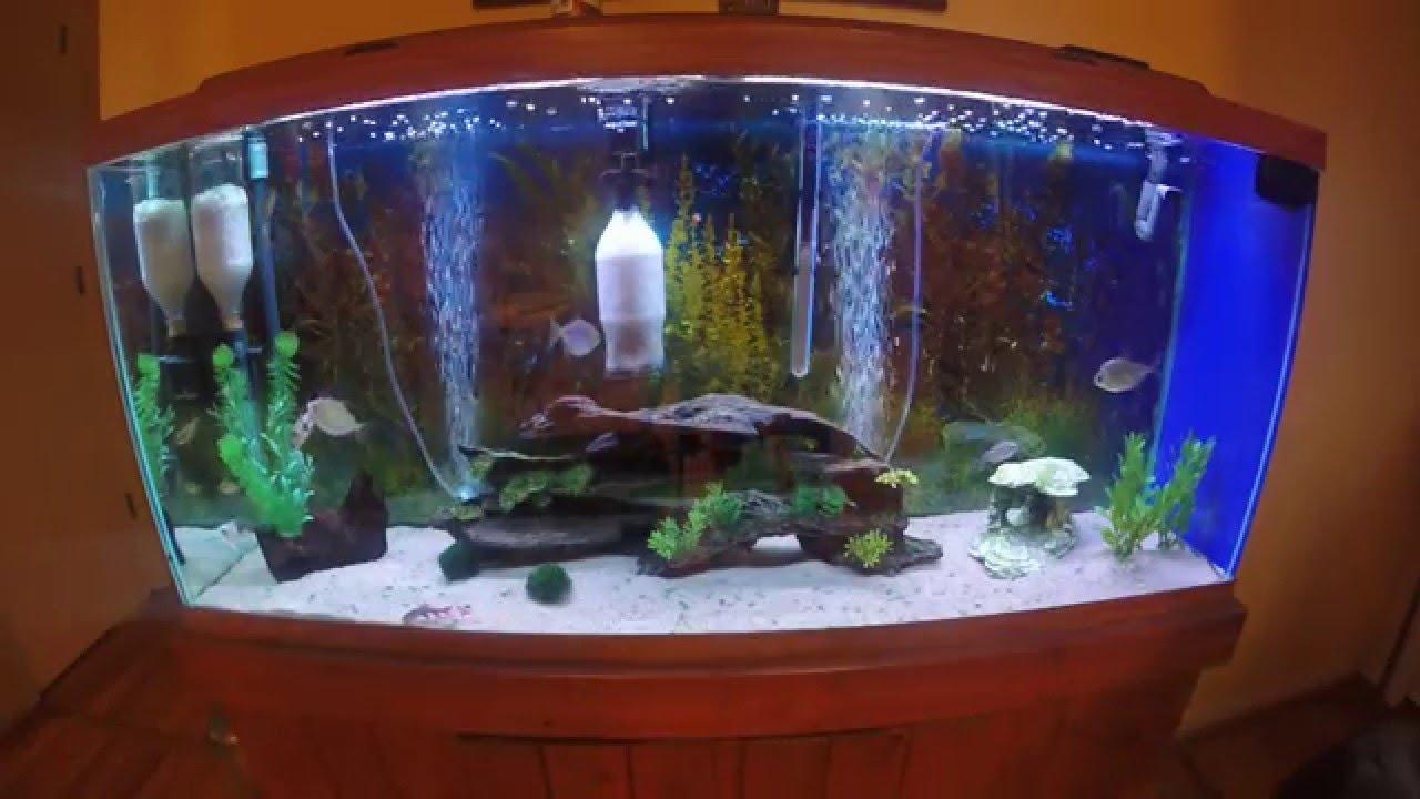 sand freshwater aquarium youtube. Black Bedroom Furniture Sets. Home Design Ideas