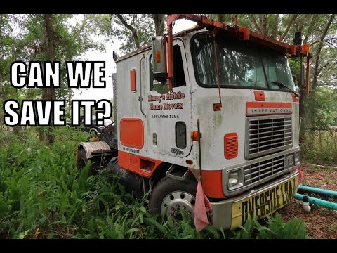 Cabover Forgotten In The Jungle. Will It Start???