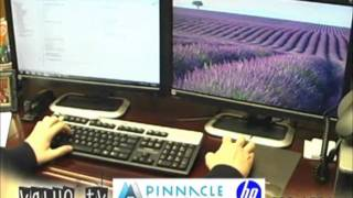 Pinnacle Network Solutions - Dual Monitors