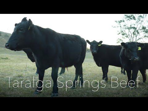 Taralga Springs Beef