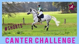 The Canter Challenge with my horse | Wellerman  #shorts