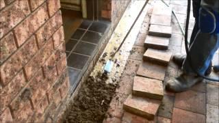 Eliminate Home Termites With A Termidor Termite Treatment