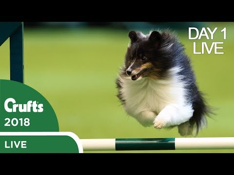 Day 1 Live Stream | Crufts 2018