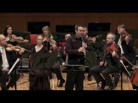 Irish Chamber Orchestra Andante