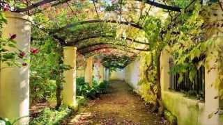 Садовые арки(, 2013-11-02T15:47:44.000Z)