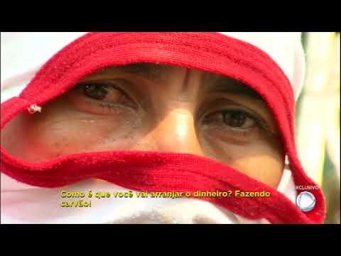 Equipe Do Câmera Record Mostra A Dura Realidade Dos Carvoeiros Clandestinos Na Amazônia