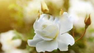George Benson - Nothings Gonna Change My Love For You Lyrics .wmv