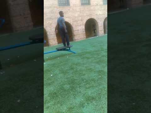 Marshall field garden flipping team