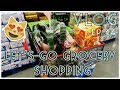 LET'S GO GROCERY SHOPPING - VLOG. EP 44