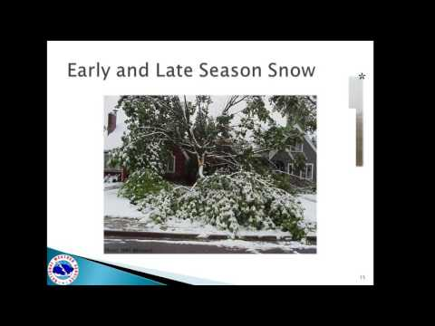 2016 Winter Weather Spotter Training - Part 2
