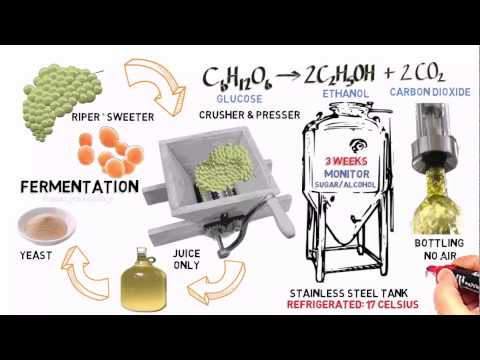 Alcohols Advanced 2: Ethanol from fermentation (of grapes).