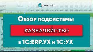 """Обзор блока Казначейство конфигурации """"1С:ERP.Управление холдингом"""""""