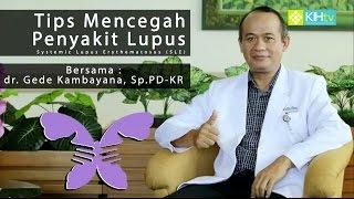 Patogenesis dan Patofisiologi Penyakit Lupus atau SLE | Proses Terjadinya Penyakit dan Gejala Lupus.