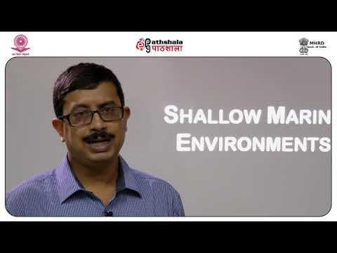 Soumik Clastic Shallow Marine Environments  Shoreface and Shelf