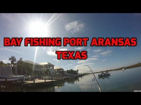Winter Bay Fishing In Port Aransas Texas. Black Drum, Redfish and Sheephead
