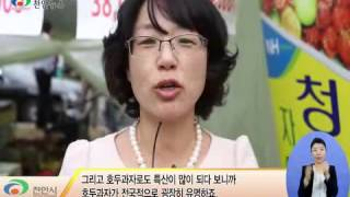 제7회 천안 호두 축제