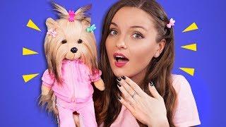 У МЕНЯ ПОЯВИЛАСЬ СОБАКА! Lucky Doggy от Orange Toys | Подарок на Новый Год | Распаковка и конкурс