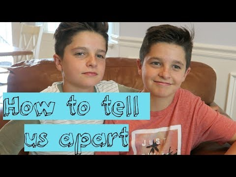 how to tell us apart!! || brock & boston