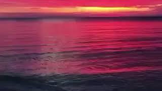 Обманутый один раз ,теряет океан доверия 🍃