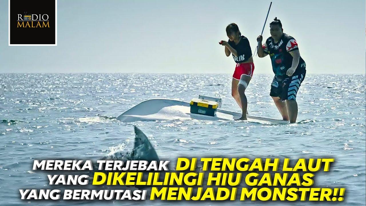 BERENANG SEJAUH 12KM DEMI MENYELAMATKAN DIRI DARI MONSTER HIU - Alur Film Killer Shark (2021)