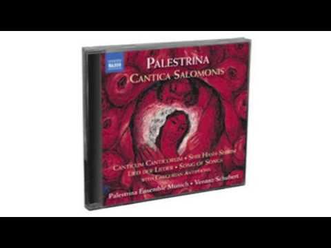 Palestrina - Cantica Salomonis  Naxos  2CD  8573096