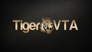 TigerBots VTA Video Training Guide Part 2 - 20 Pips a Day