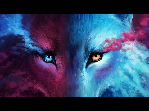 Galaxy Wolf Youtube
