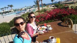 Наше утро 31 декабря 2016. Египет, Хургада, отель Magowish.(, 2016-12-31T10:52:22.000Z)