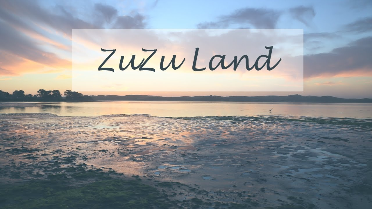 "New Video for ""ZuZu Land"""