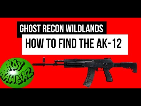 ghost recon wildlands how to find play time
