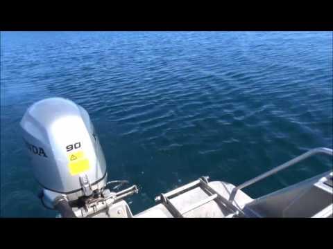 Lake Taupo Fishing Adenture 2016