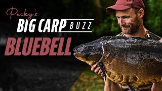 Pecky's Big Carp Buzz - Bluebell Lakes (Karpfenangeln mit Tageskarte in UK) | Korda 2021