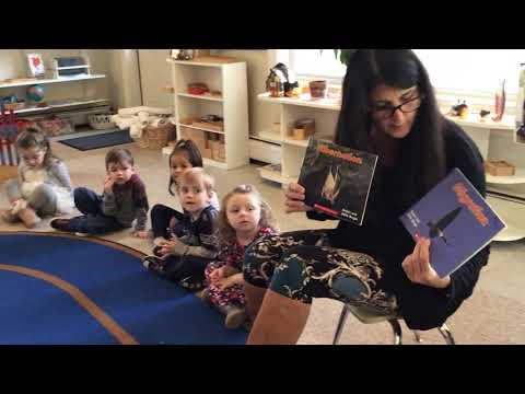Marlboro Montessori Academy Primary Class