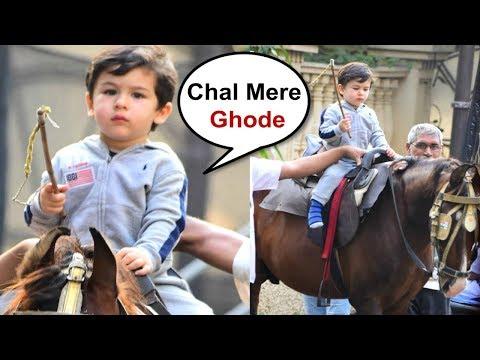 Taimur Ali Khan Riding Horse Like Professional Horse Rider