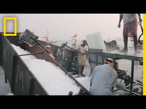 Meet The Ice Men Of Mumbai's Largest Fish Market | Short Film Showcase
