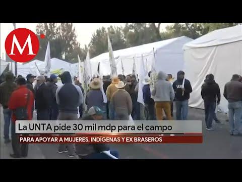 UNTA pide 30 mil mdp para campo