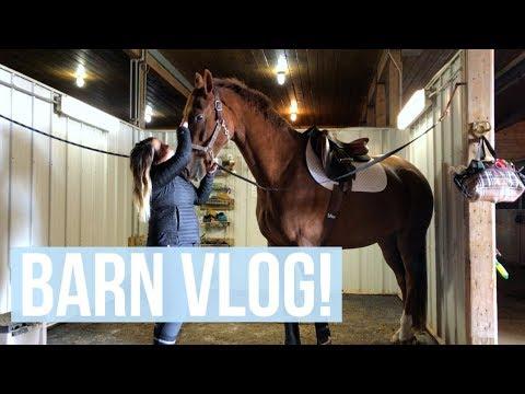 Back to Vlogging! | Equestrian Prep