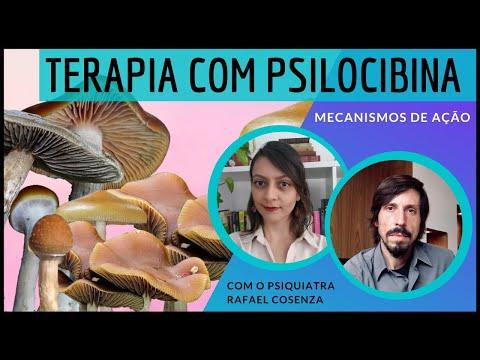 Priscilocibina