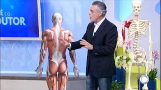 Em proteínas muscular pode dor dieta causar rica