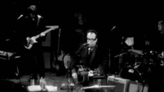 Elvis Costello - Blame It On Cain (Live)