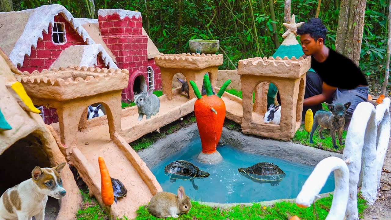 Build Dog House Rabbit House Turtle Pond For Rescue Dog Rescue Rabbit Rescue Turtle