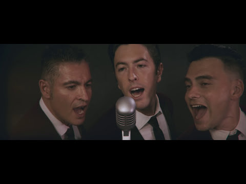 THE DREAMERS - Dream Lover (Bobby Darin cover)