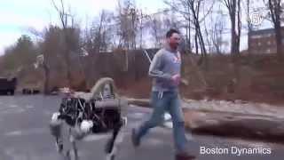 Новую собаку-робота Google показали на видео (новости)