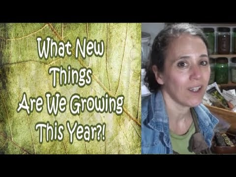 3 NEW Things We Are Growing This Spring! (Collaboration)