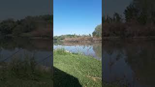 Прям Красота На Рыбалке Приколы Fishing PRO Темур Тик Ток Shorts