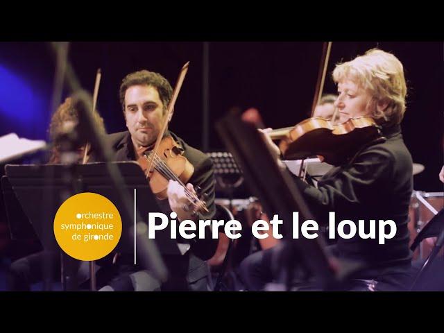 Concert classique pour enfants à Bordeaux Pierre et le loup