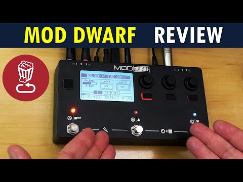 Review: MOD DWARF can revolutionize your setup, if you let it // vs ZOIA & Beebo // Tutorial