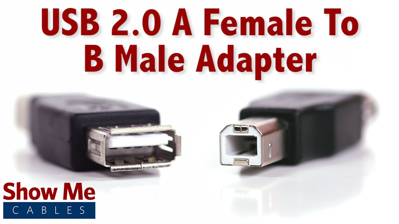 Easy to use usb 20 a female to b male adapter quickly change easy to use usb 20 a female to b male adapter quickly change connection types 3502 youtube freerunsca Image collections
