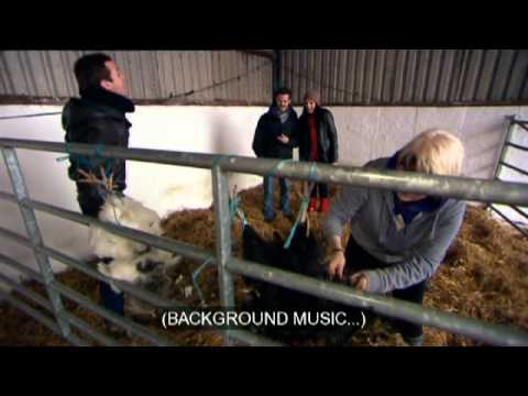Hands On Series 16 Programme 6